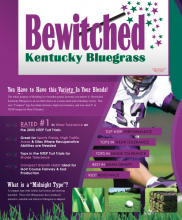 Bewitched Techsheet