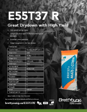 E55T37 Corn Techsheet